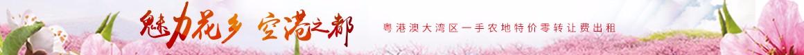 广州花都赤泥镇55.33亩优质农地零转让费出租