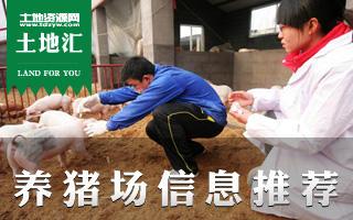 土地汇第3期:全国猪场优质土地信息推荐及猪场经营指南