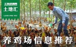 土地汇第4期:全国养鸡场土地信息推荐及养鸡场建设经营指南
