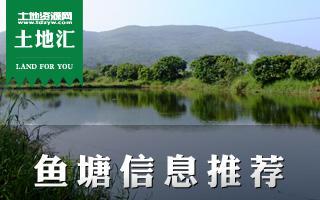 土地汇第5期:广东鱼塘优质土地信息推荐及鱼塘经营指南