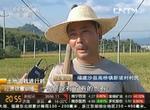 央视《土地流转进行时》:福建推广沙县模式 全省土地流转提速
