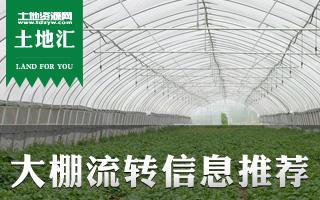 土地汇第8期:全国大棚流转信息推荐及温室大棚种养指南