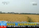 央视新闻视频:解读2014年中央一号文件