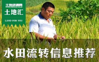 土地汇第9期:全国水田水稻田土地流转信息推荐及种植指南