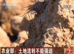 视频:农业部指出土地流转不能强迫