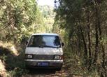 陕西宝鸡渭滨区固川村8540亩林地出租