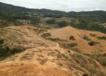 梅州大埔县600亩丘陵山地转包