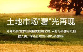 土地汇手机版第15期:土地市场