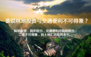 土地汇手机版第16期:谁说林地投资与交通便利不可得兼?