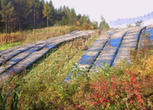 吉林通化6600.06亩农用地转让