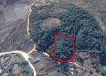 云南保山7.99亩农用地转让转让费:13万元
