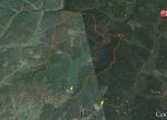 安徽宣城宁国市10000亩山地 林地合作入股转让费:3000万元
