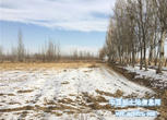 宁夏银川贺兰县3000亩设施农用地 耕地 水田转让转让费:1800万元