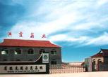 辽宁丹东东港市100亩设施农用地 农庄 农场转让转让费:540万元