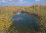 磴口荒地水塘1300亩土地流转或出租