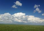 内蒙古呼伦贝尔鄂温克族自治旗1688亩草场出租转让费:10万元