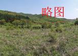 辽宁丹东振安区15.4亩园地 养殖场 耕地转让