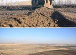 黑龙江绥化2000亩水田转包 面议