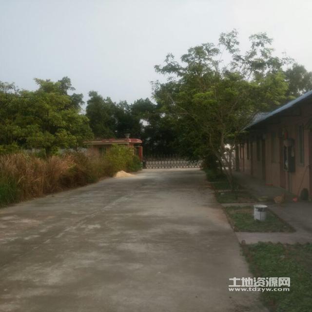 广东江门鹤山市址山镇禾南村10亩工业地空地出租
