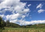 云南楚雄30亩设施农用地 水浇地转让 ,面议