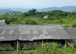 广东云浮新兴县300亩综合农场 转让