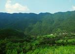 四川巴中通江县600亩荒地转让 转让费:100万元