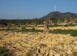 云南马龙县大庄乡80亩园地 耕地 林地转让