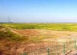 河北邯郸邯山区100亩国有工业用地转让转让费:1000万元