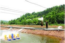 转业军官回乡创业养殖基围虾带村民致富 亩产值达8万元