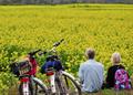农业部办公厅《关于支持创建农村一二三产业融合发展先导区的意见》全文