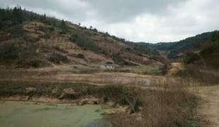 128畝農用地轉讓 面議
