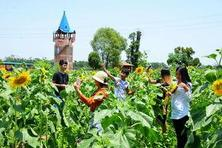 五大方面,阐明休闲农业如何促进了新农村的建设