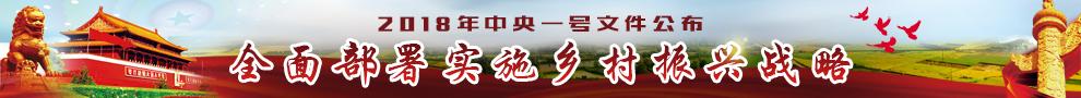 018年中央一号文件《中共中央国务院关于实施乡村振兴战略的意见》