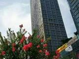 深圳. 鼎和大厦出售