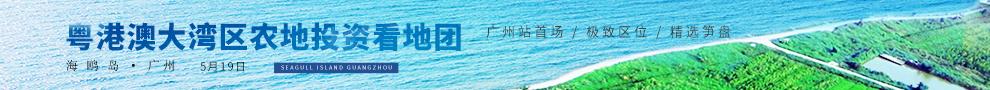 粤港澳大湾区农地投资看地团