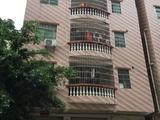 沥林整栋楼房出售