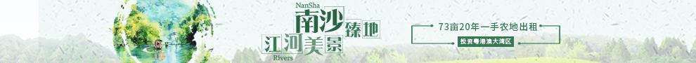 盛大招商:广州南沙73亩优质耕地出租