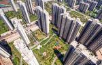 看!广东这样铁腕专项整治房地产市场秩序