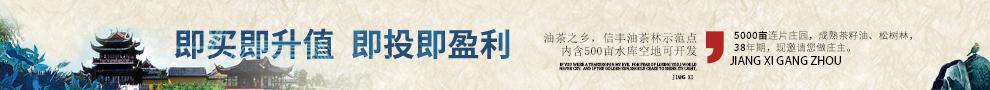 江西·赣州·信丰:5000亩高脂松油茶树项目转让