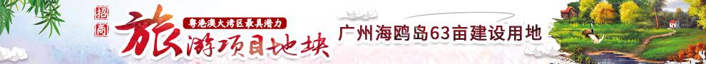 广州番禺海鸥岛63亩集体建设用地推介
