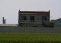 村里不批宅基地,在自家田里建房,违法吗?