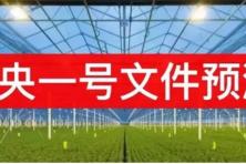 2019年中央一号文件发布在即,关乎8亿农民的命运!