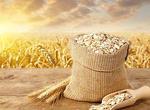 湖南召开全省粮食和物资储备工作会议(图)