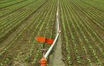三亚市南岛居引水灌溉解菜农用水之急(图)