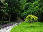 海口市秀英区在水库保护区植树500株(图)