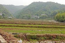 济南章丘区土地整治项目使农民受益(图)