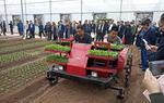 上海举办蔬菜机械化生产会(图)