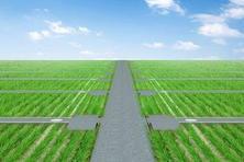 济南市农业农村局调研2019年高标准农田建设项目(图)