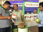 中國蔬菜種植面積超3億畝(圖)