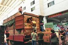"""蔬菜""""伏缺期"""" 南京市民菜篮子如何保供?(图)"""